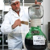 spagirika dr. Dominick Cannillo Erbenobili Ervita